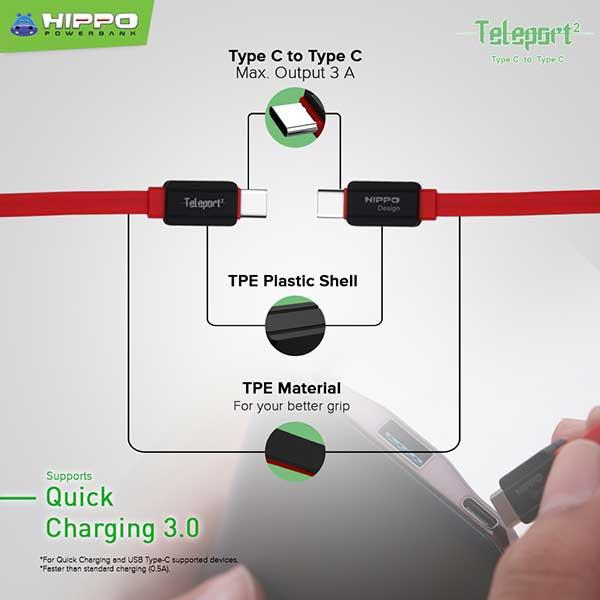 Teleport 2 Type-C to Type-C