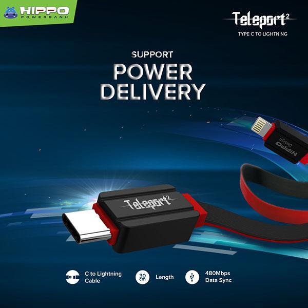 Teleport 2 Type C to Lightning 30cm